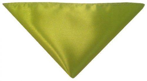 Grøn lommeklud